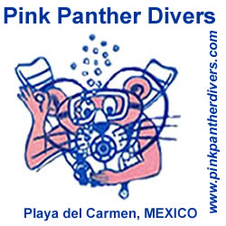 Pink Panther Divers